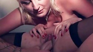 Cutie is nailed in doggie